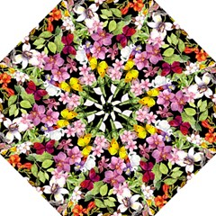 Beautiful,floral,hand painted, flowers,black,background,modern,trendy,girly,retro Folding Umbrellas