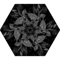 Black And White Leaves Photo Mini Folding Umbrellas by dflcprintsclothing