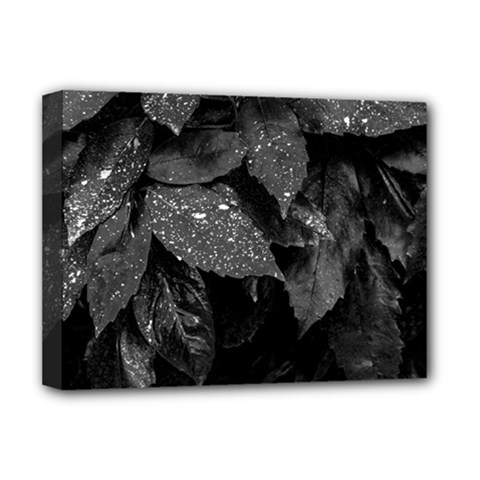 Black And White Leaves Photo Deluxe Canvas 16  X 12   by dflcprintsclothing