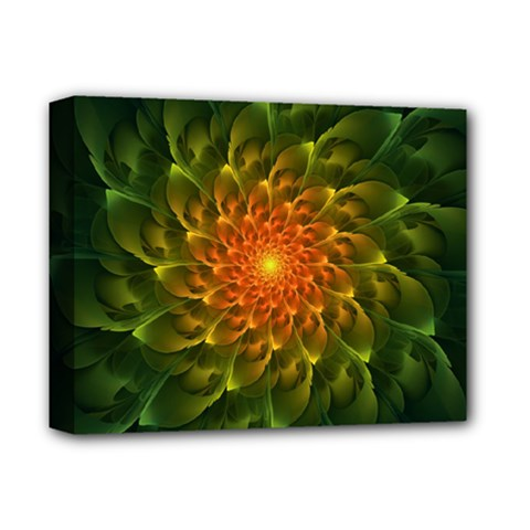 Beautiful Orange Green Desert Cactus Fractalspiral Deluxe Canvas 14  X 11  by jayaprime