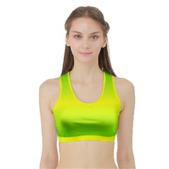 Pattern Sports Bra With Border by gasi