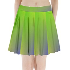 Pattern Pleated Mini Skirt by gasi