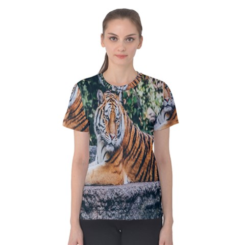 Animal Big Cat Safari Tiger Women s Cotton Tee by Celenk