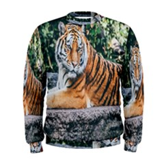 Animal Big Cat Safari Tiger Men s Sweatshirt