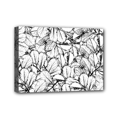 White Leaves Mini Canvas 7  X 5  by SimplyColor
