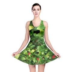 Christmas Season Floral Green Red Skimmia Flower Reversible Skater Dress by yoursparklingshop