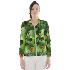 Christmas Season Floral Green Red Skimmia Flower Wind Breaker (women) by yoursparklingshop