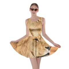 Big Male Lion Looking Right Skater Dress by Ucco