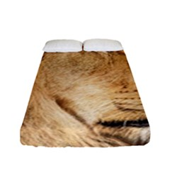 Big Male Lion Looking Right Fitted Sheet (full/ Double Size)