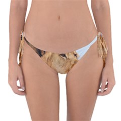 Big Male Lion Looking Right Reversible Bikini Bottom by Ucco