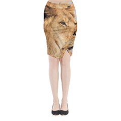 Big Male Lion Looking Right Midi Wrap Pencil Skirt