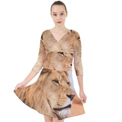 Big Male Lion Looking Right Quarter Sleeve Front Wrap Dress
