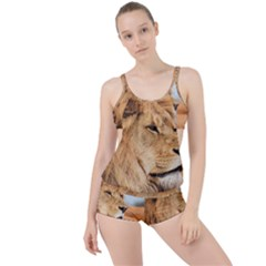 Big Male Lion Looking Right Boyleg Tankini Set  by Ucco