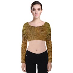 Background Gold Pattern Structure Velvet Long Sleeve Crop Top