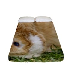 Beautiful Blue Eyed Bunny On Green Grass Fitted Sheet (full/ Double Size)