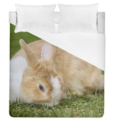 Beautiful Blue Eyed Bunny On Green Grass Duvet Cover (queen Size) by Ucco