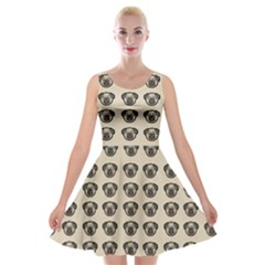 Puppy Dog Pug Pup Graphic Velvet Skater Dress