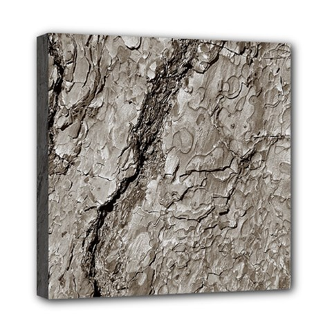 Tree Bark A Mini Canvas 8  X 8  by MoreColorsinLife