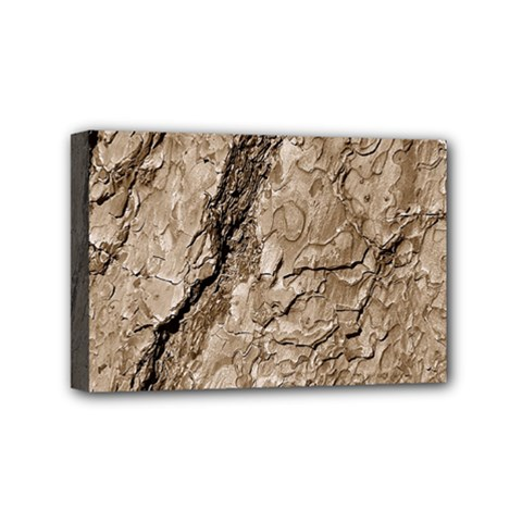 Tree Bark B Mini Canvas 6  X 4