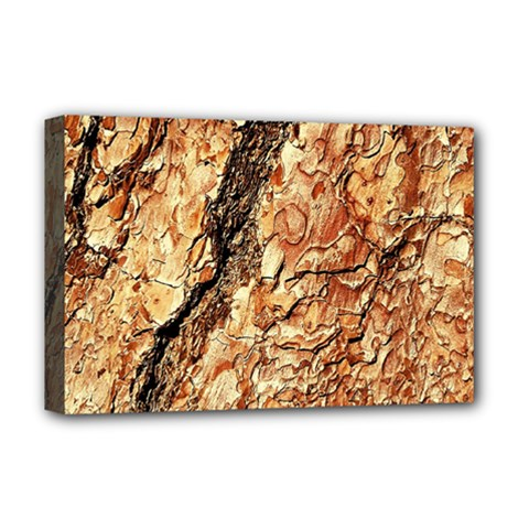 Tree Bark D Deluxe Canvas 18  X 12   by MoreColorsinLife