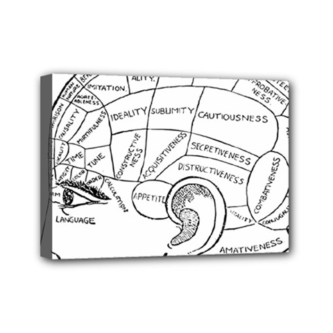 Brain Chart Diagram Face Fringe Mini Canvas 7  X 5  by Celenk