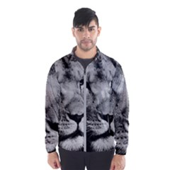 Africa Lion Male Closeup Macro Wind Breaker (men) by BangZart