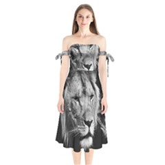 Africa Lion Male Closeup Macro Shoulder Tie Bardot Midi Dress by BangZart