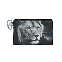 Africa Lion Male Closeup Macro Canvas Cosmetic Bag (small)