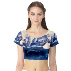 Antarctica Mountains Sunrise Snow Short Sleeve Crop Top
