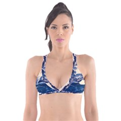 Antarctica Mountains Sunrise Snow Plunge Bikini Top