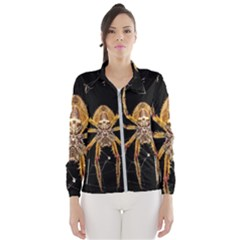 Insect Macro Spider Colombia Wind Breaker (women)