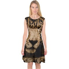 Jaguar Water Stalking Eyes Capsleeve Midi Dress
