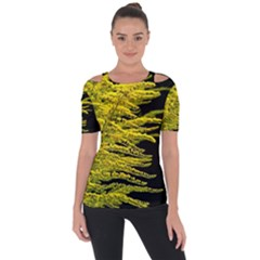 Golden Rod Gold Diamond Short Sleeve Top