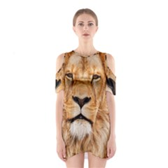Africa African Animal Cat Close Up Shoulder Cutout One Piece