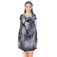 Feline Lion Tawny African Zoo Flare Dress by BangZart