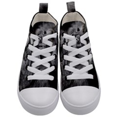 Feline Lion Tawny African Zoo Kid s Mid Top Canvas Sneakers