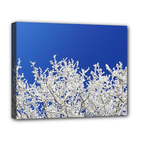 Crown Aesthetic Branches Hoarfrost Deluxe Canvas 20  X 16
