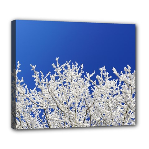 Crown Aesthetic Branches Hoarfrost Deluxe Canvas 24  X 20