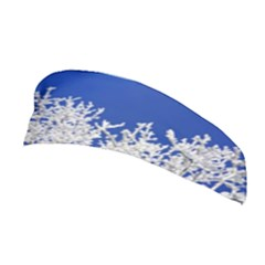 Crown Aesthetic Branches Hoarfrost Stretchable Headband