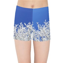 Crown Aesthetic Branches Hoarfrost Kids Sports Shorts