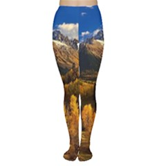Colorado Fall Autumn Colorful Women s Tights