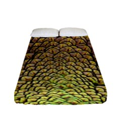 Peacock Feathers Wheel Plumage Fitted Sheet (full/ Double Size)