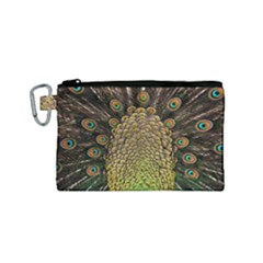 Peacock Feathers Wheel Plumage Canvas Cosmetic Bag (small)