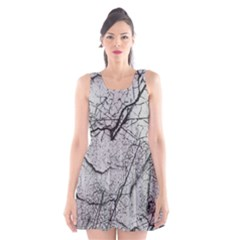 Abstract Background Texture Grey Scoop Neck Skater Dress by BangZart