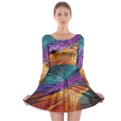 Graphics Imagination The Background Long Sleeve Skater Dress
