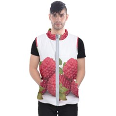 Fruit Healthy Vitamin Vegan Men s Puffer Vest