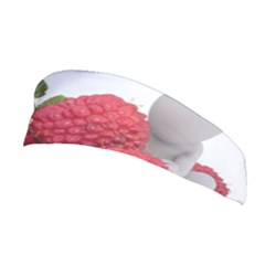 Fruit Healthy Vitamin Vegan Stretchable Headband