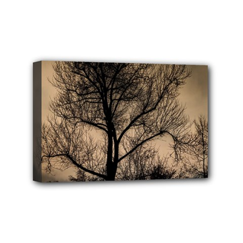 Tree Bushes Black Nature Landscape Mini Canvas 6  X 4