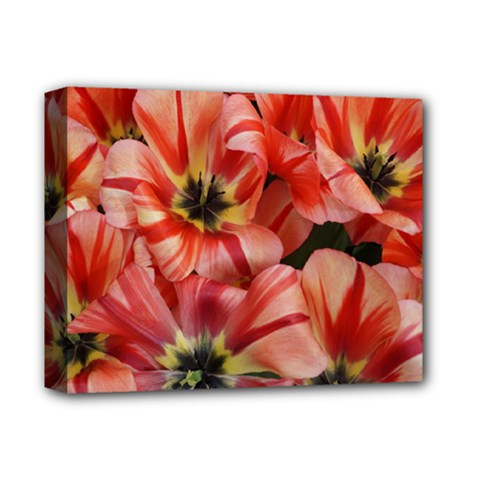 Tulips Flowers Spring Deluxe Canvas 14  X 11  by BangZart