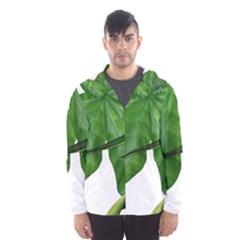 Plant Berry Leaves Green Flower Hooded Wind Breaker (men)